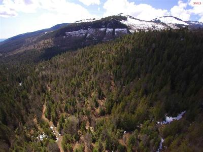 Sandpoint Residential Lots & Land For Sale: Nka Hellroaring Creek Rd. (20 Acres)