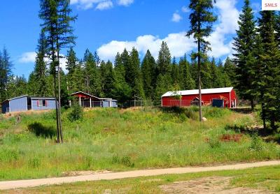 Priest River Single Family Home For Sale: 4589 Bandy Rd