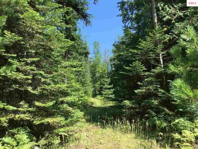 Sandpoint Residential Lots & Land For Sale: Nna Michael Lane
