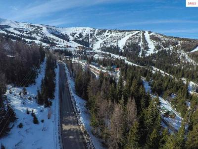 Sandpoint Residential Lots & Land For Sale: Nna Schweitzer Mountain Rd