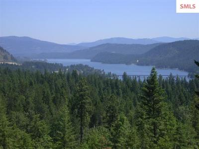Sandpoint Residential Lots & Land For Sale: Nna Lot 4 Eagle View