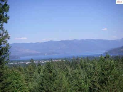 Sandpoint Single Family Home For Sale: 1040 Wood View Rd.