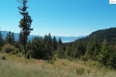 Residential Lots & Land For Sale: 367 Ponderosa Terrace