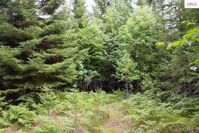 Bonners Ferry Residential Lots & Land For Sale: Nna Double Eagle Ln