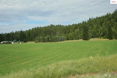 Bonners Ferry Residential Lots & Land For Sale: 6075 Main Street