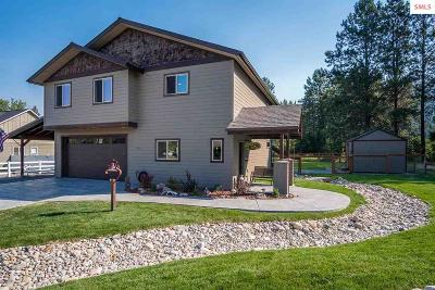 Sagle Single Family Home For Sale: 453 Birch Haven Drive