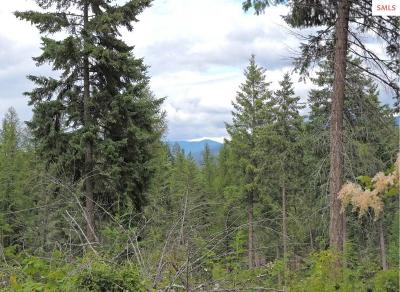Bonners Ferry Residential Lots & Land For Sale: Nna Ginger Lane