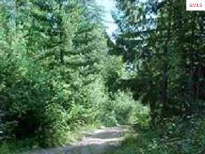 Priest River Residential Lots & Land For Sale: Nna Stone Johnny