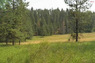 Sandpoint Residential Lots & Land For Sale: 191 Jeffres Lane