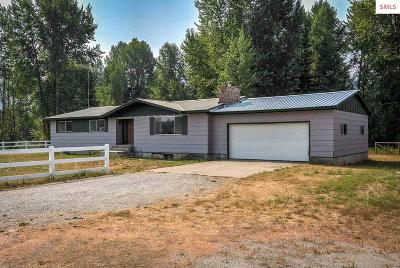 Priest River Single Family Home For Sale: 1390 Old Priest River Road