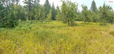 Residential Lots & Land For Sale: Nna Moyie River Road