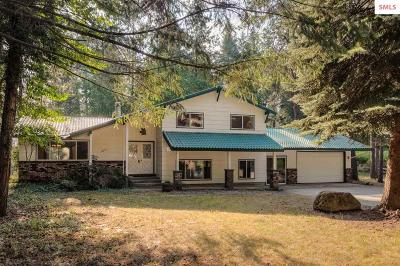 Hayden Single Family Home For Sale: 12247 N Forest Rd