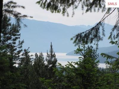 Sandpoint Residential Lots & Land For Sale: 275 Hidden Springs Rd