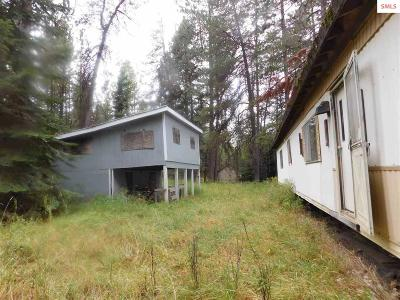 Single Family Home For Sale: 429315 Hwy 20