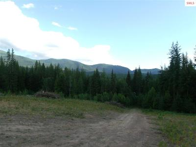 Sandpoint Residential Lots & Land For Sale: 1239 Flume Creek