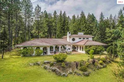 Sandpoint Single Family Home For Sale: 176 Syringa Heights Rd