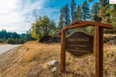 Sandpoint Residential Lots & Land For Sale: Lot 2 Forest Knolls