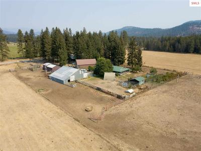 Priest River Single Family Home For Sale: 1926 Kendall Rd