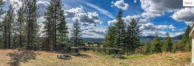 Careywood Single Family Home For Sale: 279 Richardsons Ridge