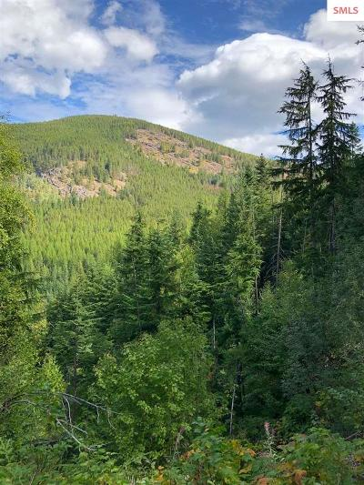 Sandpoint Residential Lots & Land For Sale: Nka Stove Rd.