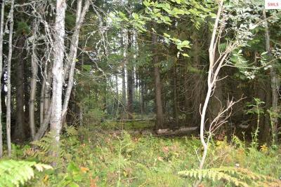 Sandpoint ID Residential Lots & Land For Sale: $69,000