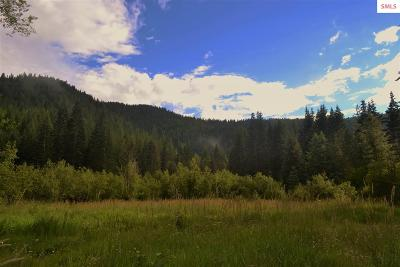 Priest River Residential Lots & Land For Sale: Nna Lower Quartz Rd. 5.35 Acres
