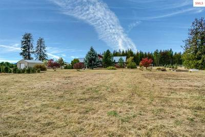 Sandpoint Single Family Home For Sale: 10164 Colburn Culver Rd