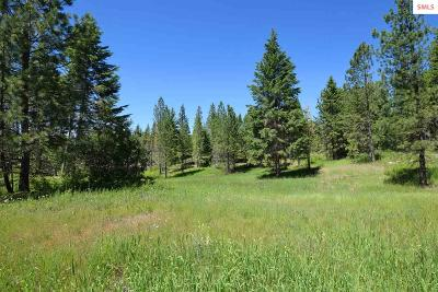 Bonners Ferry Residential Lots & Land For Sale: Tract 2 Camp Nine Rd