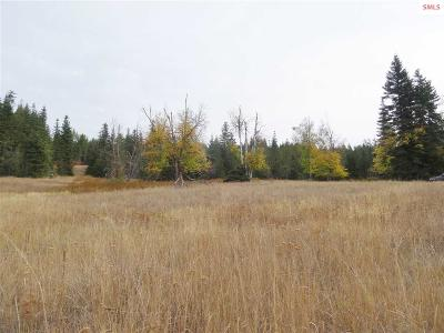 Priest River Residential Lots & Land For Sale: 357 E Settlement Rd.