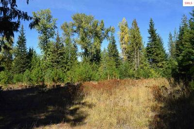 Priest River Residential Lots & Land For Sale: 4482 Gleason McAbee Rd