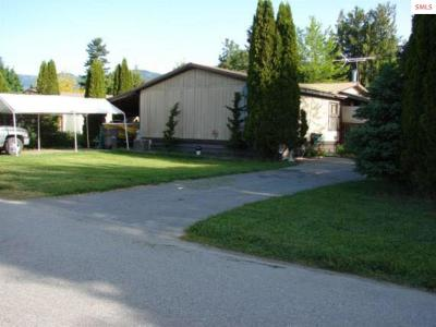 Sandpoint Single Family Home For Sale: 1111 Main St