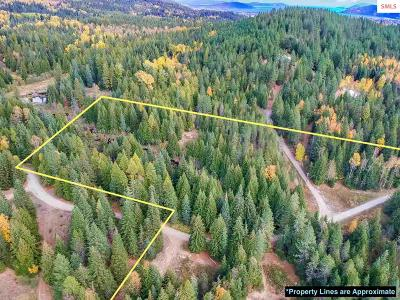 Sandpoint Residential Lots & Land For Sale: 397 Larsen Ranch Ln