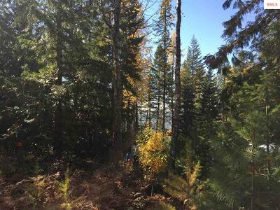 Sandpoint Residential Lots & Land For Sale: 17 Namaste Path
