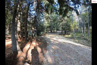 Sandpoint Residential Lots & Land For Sale: Nna S Idaho Club Drive