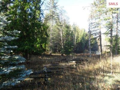 Sandpoint Residential Lots & Land For Sale: 350 E Sunnyside Hill Rd.