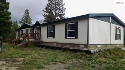 Sandpoint Single Family Home For Sale: 791 Sitting Bull Road
