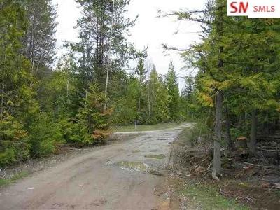 Residential Lots & Land For Sale: 1250 Round Mountain Road