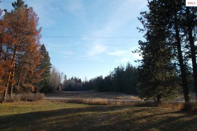 Sandpoint Residential Lots & Land For Sale: 10148 &10150 W Pine Street