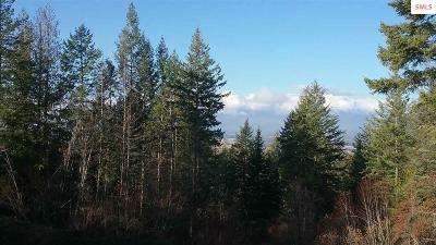 Sandpoint Residential Lots & Land For Sale: Nna S Idaho Club Dr