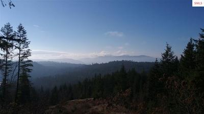 Sandpoint Residential Lots & Land For Sale: Nna Idaho Club Dr