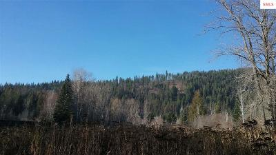 Sandpoint Residential Lots & Land For Sale: Nna Waterdance Way