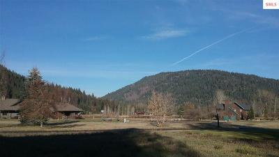 Sandpoint Residential Lots & Land For Sale: Nna Idaho Club Drive