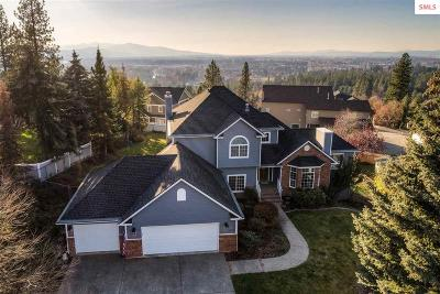 Coeur D'alene Single Family Home For Sale: 2434 E Summit Dr