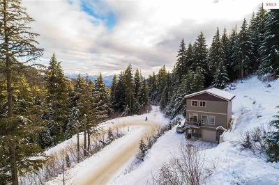 Sandpoint Single Family Home For Sale: 751 Telemark