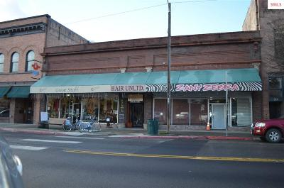 Commercial For Sale: 317 N First Ave