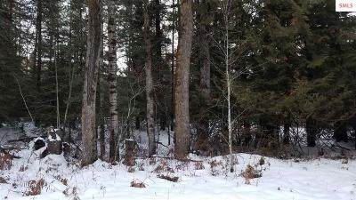 Sandpoint Residential Lots & Land For Sale: 487254 Highway 95