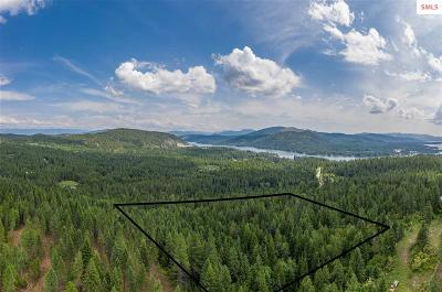 Sandpoint Residential Lots & Land For Sale: Lot 29 N Carr Creek Road