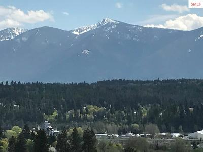 Bonners Ferry Residential Lots & Land For Sale: Nka Wildhorse Lane