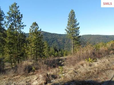 Post Falls Residential Lots & Land For Sale: Nka S Idaho Road 15