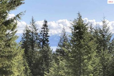 Sandpoint Residential Lots & Land For Sale: Janish Dr